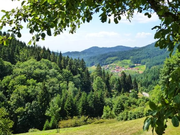 Blick vom Ferienhaus auf Seebach im Schwarzwald