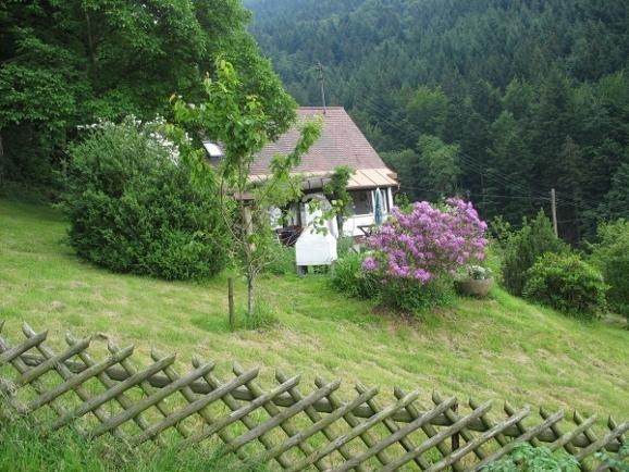 Der Garten vom Ferienhaus